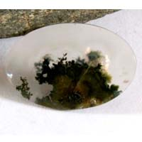 moss agate A cabochon