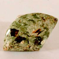 rainforest jasper D cabochon
